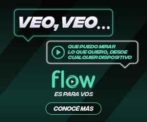 FLOW_Banner_Veo_Veo_300x250.jpg